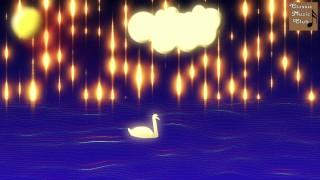 The Swan – Carnival of the Animals – Camille Saint Saens – Der Schwan – Karneval der Tiere